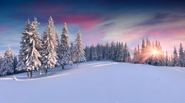 24512361 - panorama of the winter sunrise in the mountains